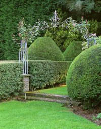 lutyens-and-jeykll-topiary