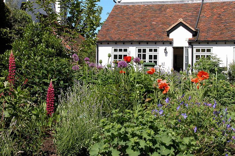 village-garden-flowers
