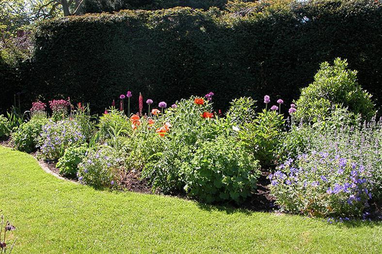 village-garden-flowerbed